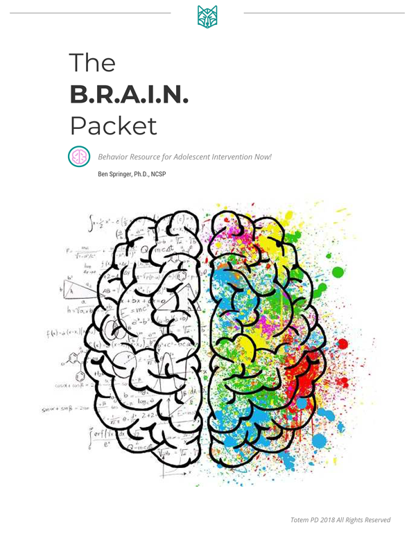 The BRAIN Packet   Totem PD